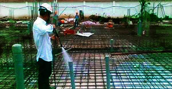 diệt mối tại Quảng Ninh