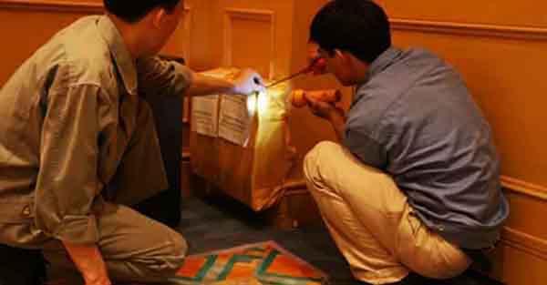 diệt mối tại nhà ở Lâm Đồng