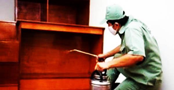 Phòng chống mối tại Lạng Sơn
