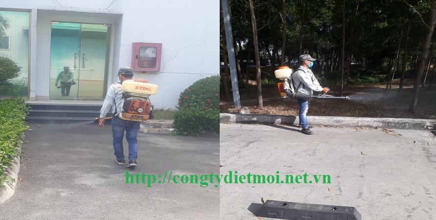 Công ty phun muỗi tận gốc Đà Nẵng